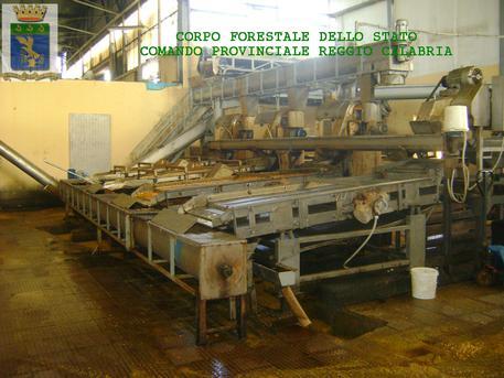 Azienda sottoposta a sequestro da Corpo forestale Reggio