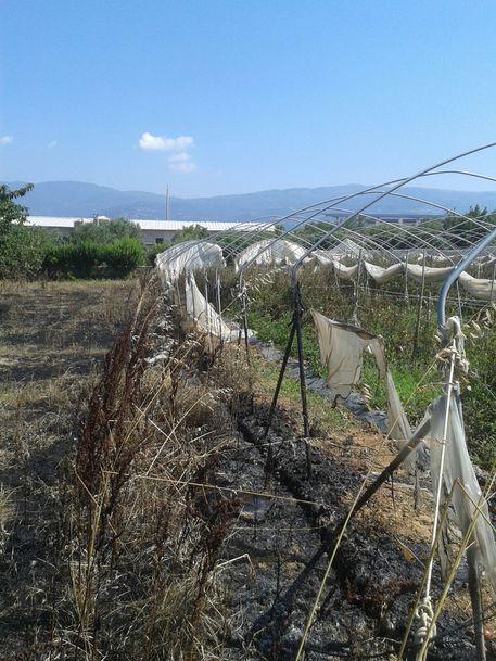 Incendiato terreno Progetto Sud