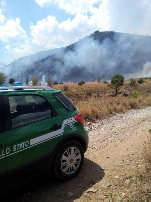 Incendio doloso a Cetraro