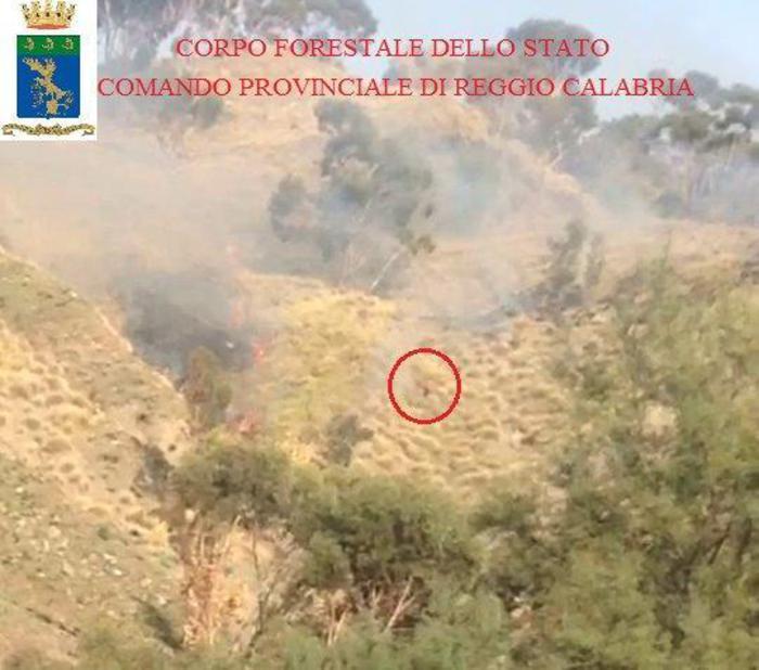foto Ansa - sorpreso ad appiccare incendio arrestato da Corpo forestale